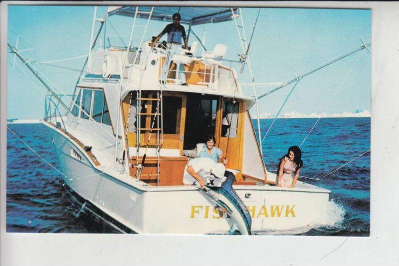 FISCHFANG - Angeln - fishing, Florida, Boating a sailfish