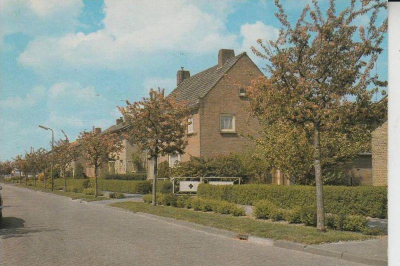 NL - ZUID - HOLLAND, NUMANSDORP, Vlielanderstraat