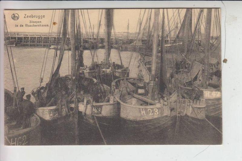 BERUFE - FISCHFANG - Zeebrugge Fischereihafen