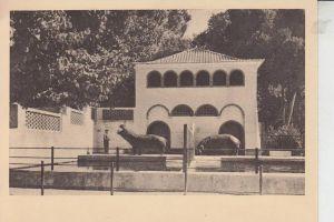 P 1000- LISBOA - LISSABON, Jardim Zoologico, O recinto dos Hipopotamos, Hippo Nilpferd