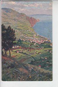 P 9000 MADEIRA, Paolo Kutscha, Artist Madeira Series II, Vista de Funchal do Pico de Barcellos