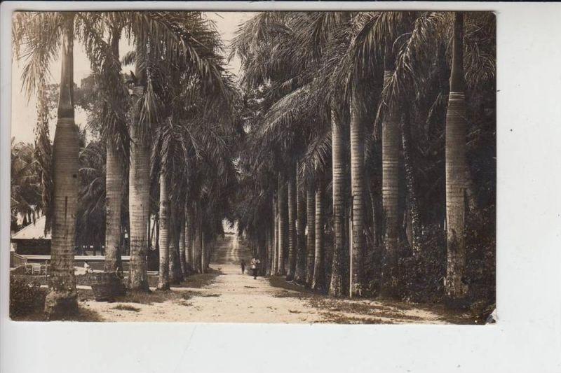 INDONESIEN - SABANG 1925, kl. Eckmangel