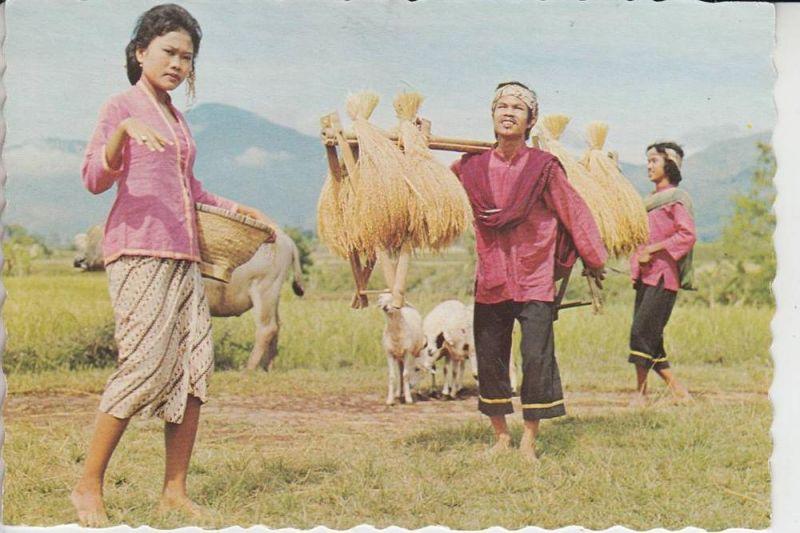 INDONESIEN - Gondang dance - West-Java
