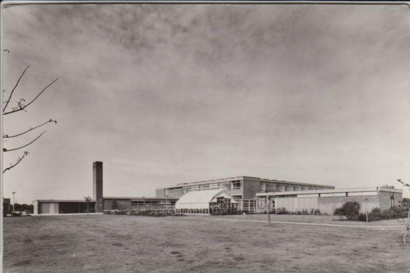NL - UTRECHT - Utrecht Stad - Hubrecht Laboratory 1966