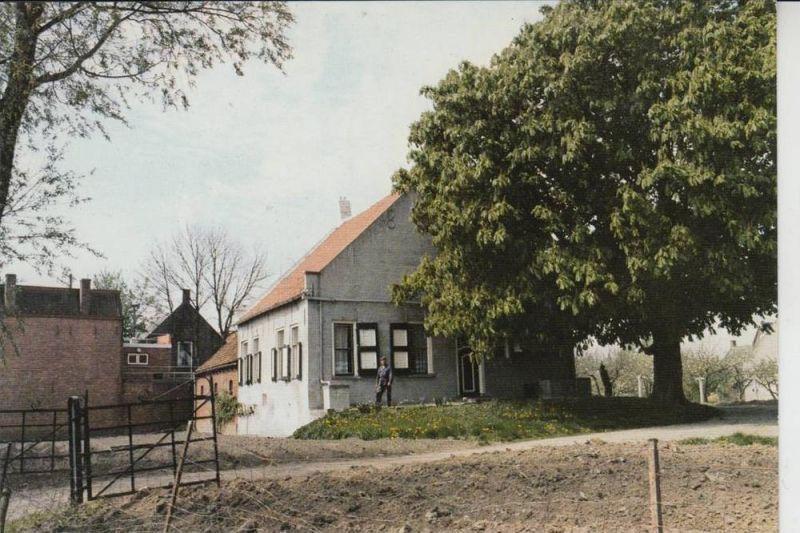 NL - ZEELAND - THOLEN - POORTVLIET, Dorpgezicht