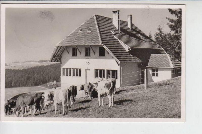 NATURFREUNDE - NFH - NFI - Naturfreundehaus Hatzenwald Kreis Säckingen - Landpoststempel Altenschwand