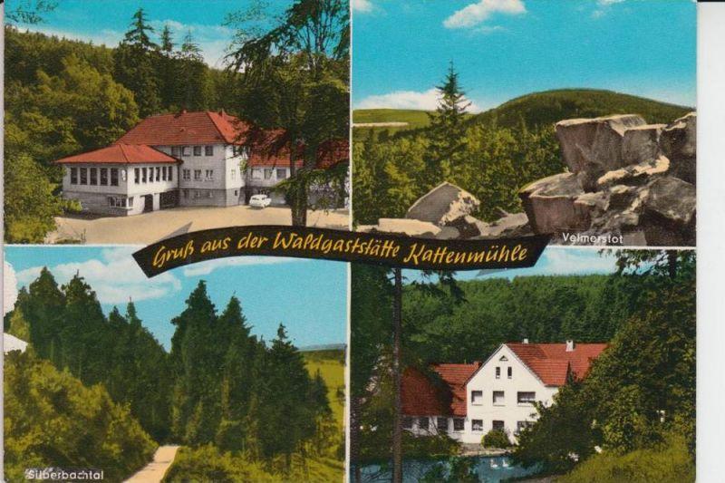 4934 HORN - BAD MEINBERG, Horn, Waldgaststätte Kattenmühle, Mehrbildkarte
