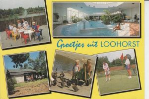 SPORT - GOLF - Mehrbildkarte - Loohorst / NL