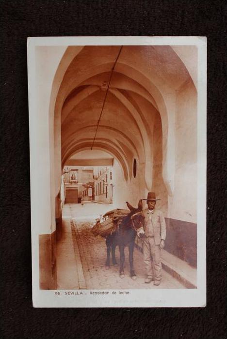E 410.. SEVILLA, Sevilla - Venedor de Leche - poner fina - dünne Stelle