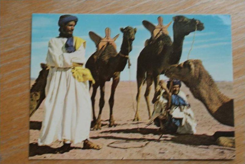 MA - Marokko, Maroc, Hommes bleus et leurs Mahara, Kamele - Camel, Ethnic