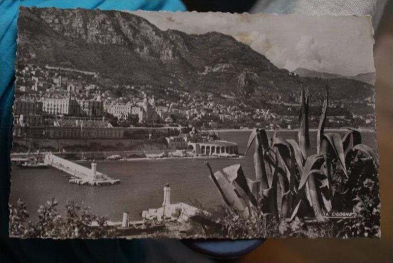 MC MONACO - Monte Carlo, L'entree du port