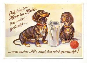 HUNDE - DACKEL / Teckel / Dachshund / Bassotto - Humor, 1954