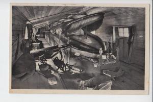 TIERE - WALE - Fischfang - Harpune - Riesewalfisch 23,5 m, 168 Jahre
