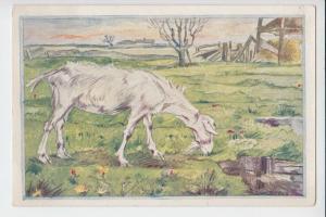 TIERE - ZIEGEN-Geiten-Goats-Chevres - mit Kind, Künstler-Postkarte Kuperus-Serie No.16