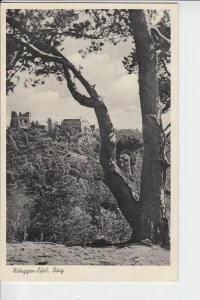 5168 NIDEGGEN, Burg