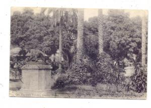 GUINEA - CONAKRY, Entrance Public Garden, 1906