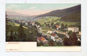 NIEDER-SCHLESIEN - HIRSCHBERG-AGNETENDORF / JELENA GORA-JAGNIATKOW, Ortsansicht ca. 1905