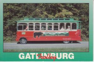 AUTO - Gatlinburg Trolley - USA