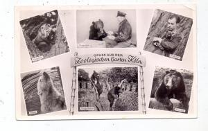 5000  KÖLN, Zoo, 195.., kl. Eckknick