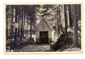 BÖHMEN & MÄHREN - NEUSTADT an der Tafelfichte /NOVE MESTO POD SMRKEM, Am Sauerbrunnen