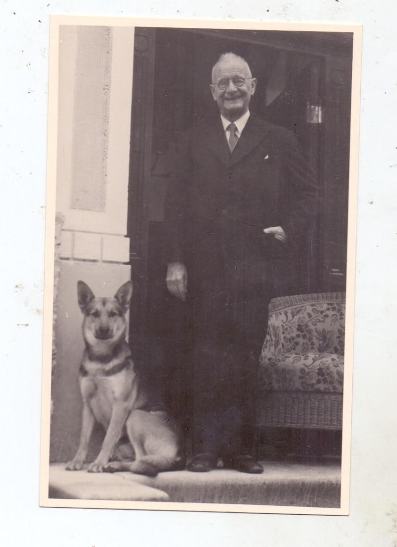 HUNDE - SCHÄFERHUND / Sheperd Dog, Chien de Berge / Herdershond, Photo-AK 1952 0