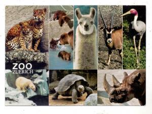 CH 8000 ZÜRICH ZH, Zoologischer Garten, Mehrbild-AK
