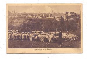 8803 ROTHENBURG / Tauber, Ansicht mit Schafherde, 1909