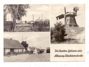 WINDMÜHLE / Molen / Mill - Altwarp
