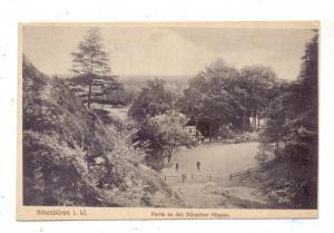 4530 IBBENBÜREN, Partie an den Dörenther Klippen, 1918, Feldpost - Bahnpost Gütersloh - Ibbenbüren