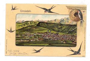 CH 8840 EINSIEDELN SZ, Gesamtansicht, Schwalben, Schwalbennest, teils geprägt, 1904, Benziger