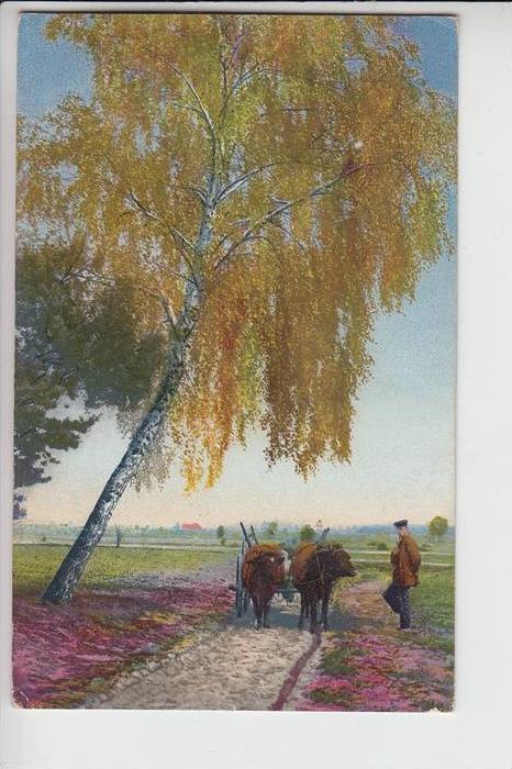 LANDWIRTSCHAFT, 1907, Photochromiekarte 0