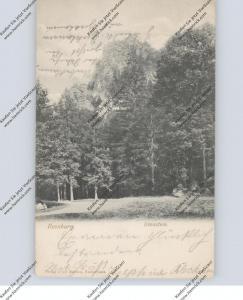 0-3705 ILSENBURG, Ilsenstein, 1907
