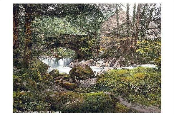 Altes Photochrome-Farbfoto Torrent Walk bei Dolgelly (Neudruck als Postkarte) 0