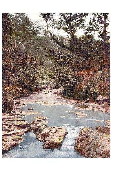 Altes Photochrome-Farbfoto Hayburn Wyke bei Scarborough (Neudruck als Postkarte)
