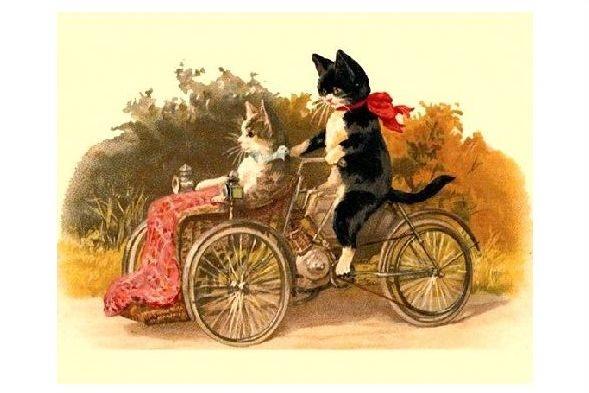 Alte Künstlerkarte Kater fährt Katze auf Dreirad spazieren (Neudruck als Postkarte)