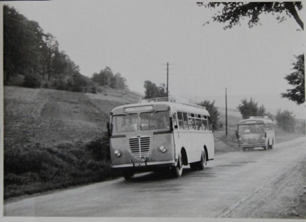 Büssing-NAG Busse auf Reisen Originalphoto 1953
