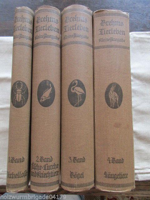 Brehms Tierleben in 4 Bänden Kleine Ausgabe für Volk und Schule 1915-1920