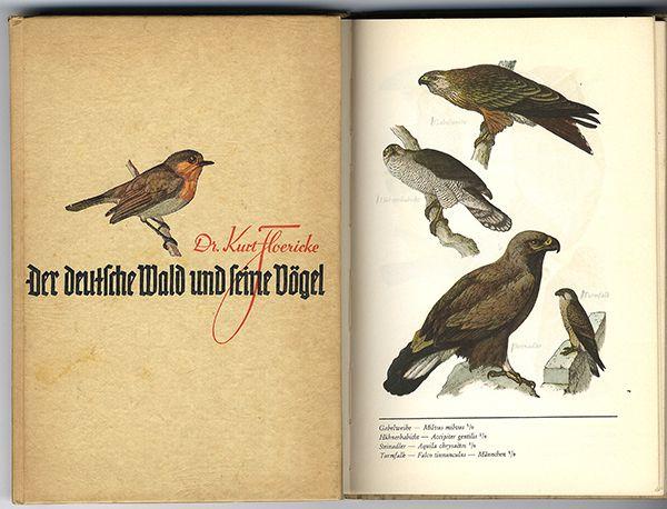 Deutschland Biologie Ornithologie Wald Vogel Arten Buch 1935