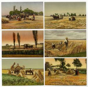 Schweiz Landwirtschaft Ernte Feldarbeit Bauern Serie von 6 farbigen Postkarten