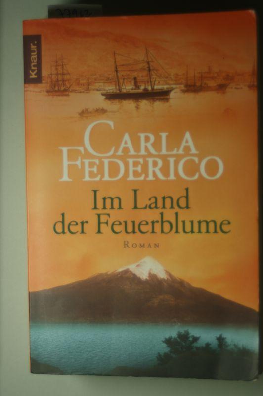 Federico, Carla: Im Land der Feuerblume 0