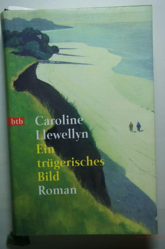 Llewellyn, Caroline: Ein trügerisches Bild