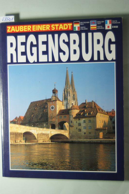 Sassi, Dino: Regensburg. Zauber einer Stadt. Dt. /Engl. /Franz. /Ital. /Span. /Jap.