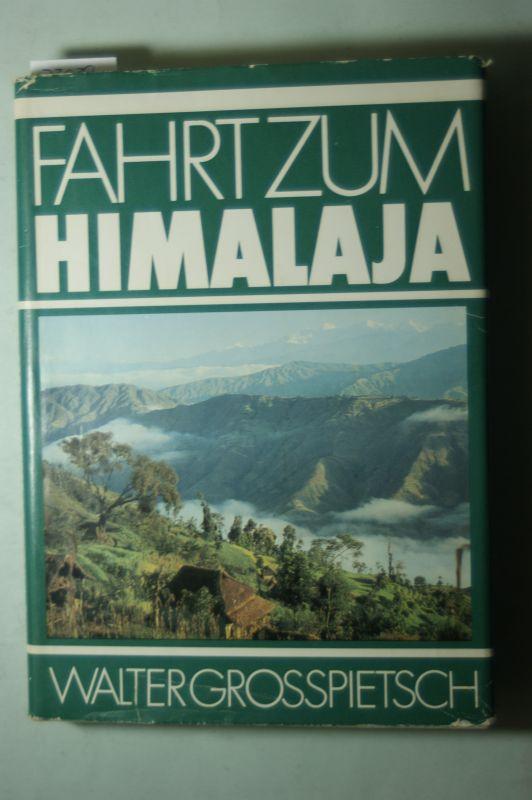 Grosspietsch, Walter: Fahrt zum Himalaya.