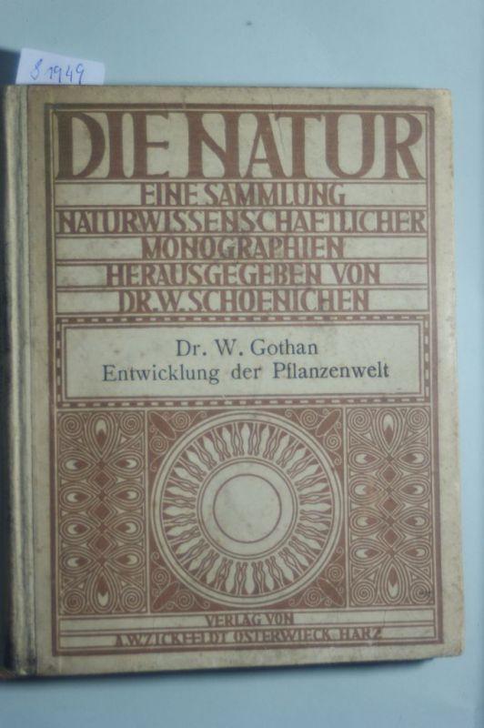 Gothan, Dr. W.: Die Natur Band 6. Die Entwicklung der Pflanzenwelt im Laufe der geologischen Epochen