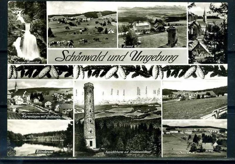 K10436)Ansichtskarte: Schönwald