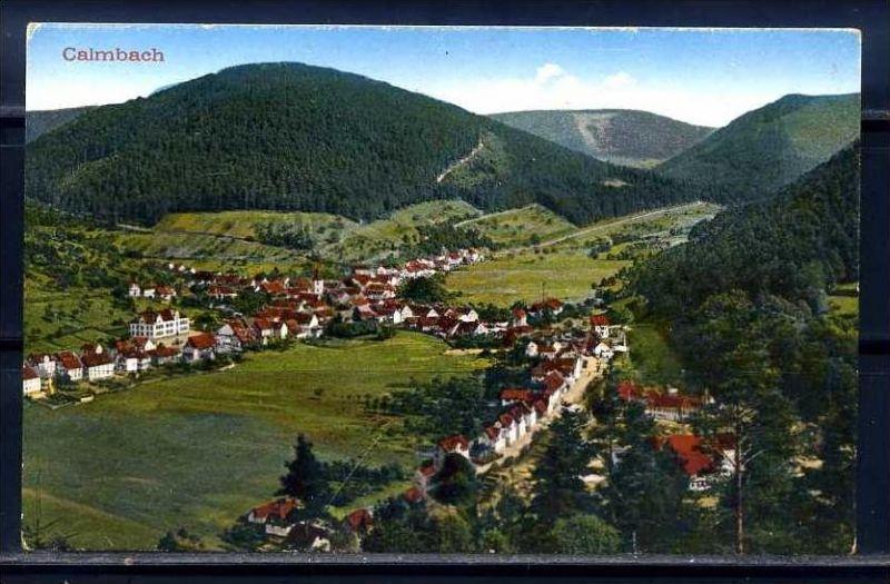 K7995)Ansichtskarte: Calmbach