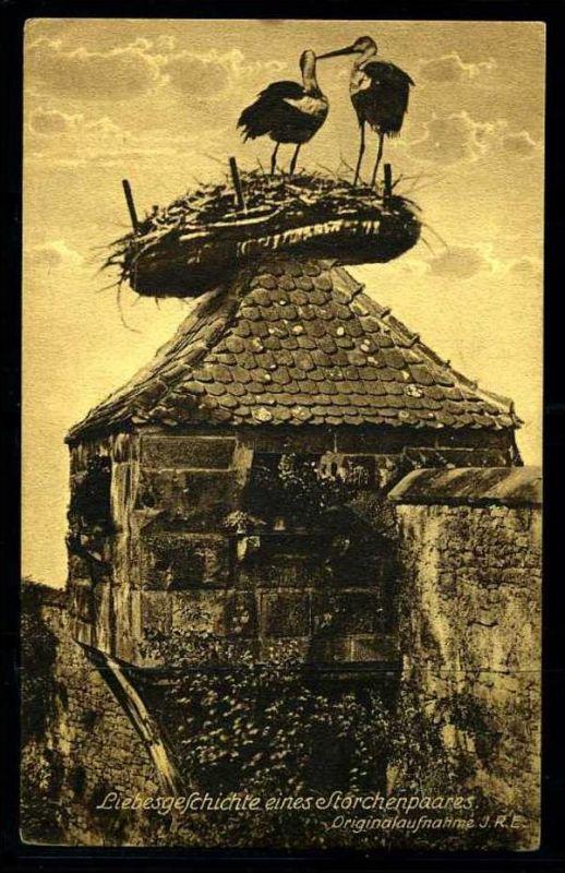 K3387)Ansichtskarte Storch