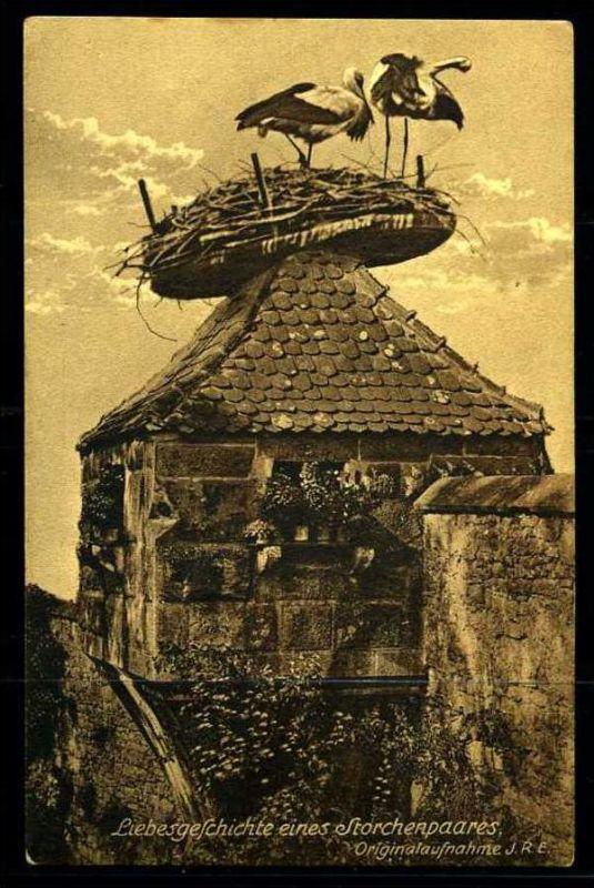 K3388)Ansichtskarte Storch