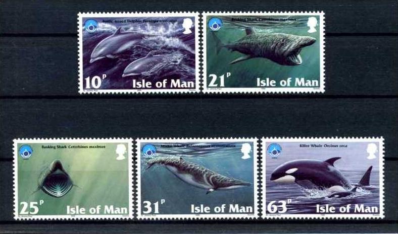E22480)Wale, Man 758/62**