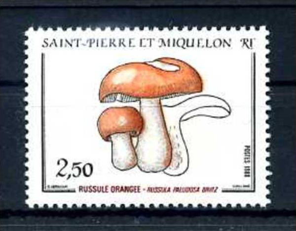 E24625)Pilze, St. Pierre & Miquelon 556**